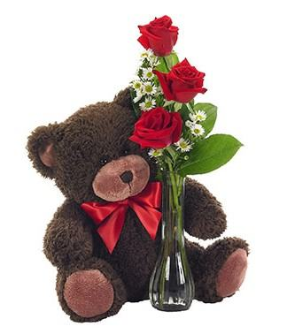 Trio Red Rose and Teddy Bear