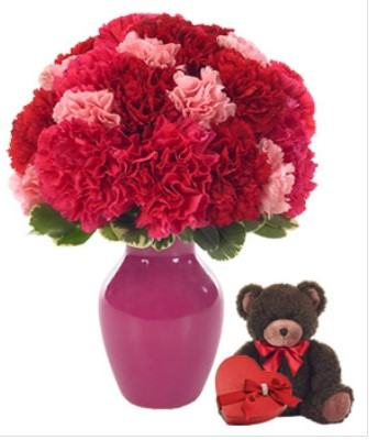 Carnations with Sweet Chocolate and Teddy