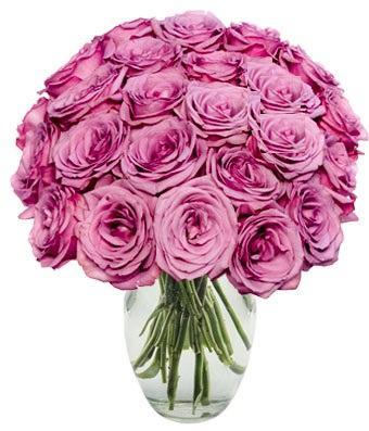 24 Purple Roses Bouquet