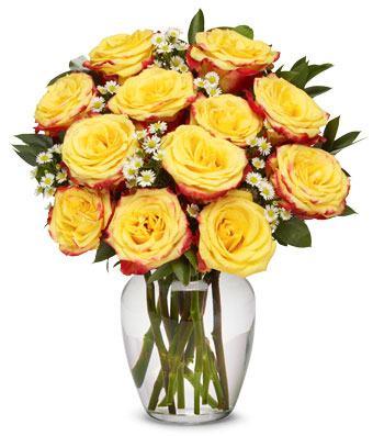 24 Festive Roses Bouquet